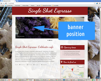 Photo showing web site banner position