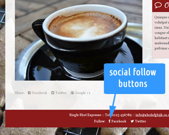 Photo showing social network follow buttons on the web site