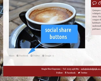 Photo showing social network share buttons on the web site